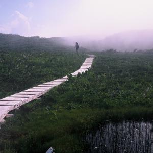 富山県で少し登山気分
