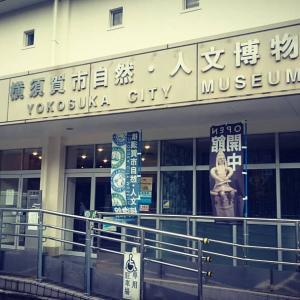 2019 6/3(月) 横須賀市自然人文博物館