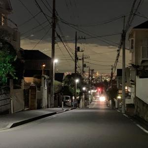 高台からの夜景