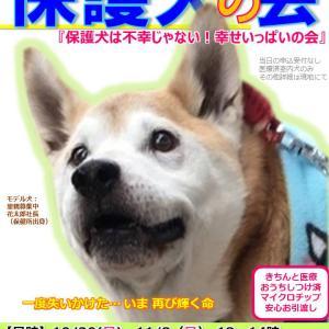 ありがとう 10/20保護犬の会 雅くんママ
