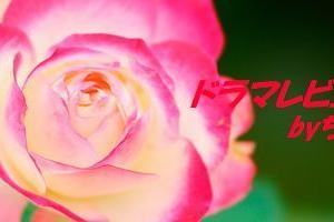 """【行列の女神~らーめん才遊記~:第6話 """"難波倫子""""松井玲奈が再び】"""