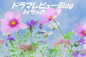 【チョ・スンウ×ぺ・ドゥナ主演 「秘密の森」感想、レビュー】