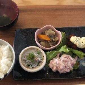 【食べ歩き】「せとうちキッチン まともや」プレートランチ ホタテのフライ:松山市