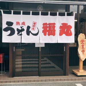 【うどん】「熟成手打ちうどん 福丸」しょうゆうどん:松山市