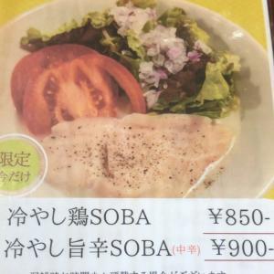 【ラーメン】「麺 いろどり」冷やし旨辛SOBA:松山市