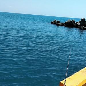 近くの太平洋へ投げ釣り