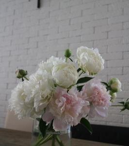いちばん好きな花