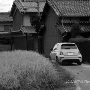 散歩写真「おシャレな車」:葛城市今在家