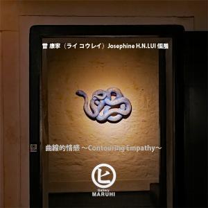曲線的情感 〜Contouring Empathy〜 / 雷 康寧