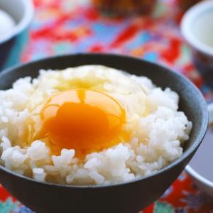 アメリカで卵かけご飯を食べ放題にしてみたら人生が変わった
