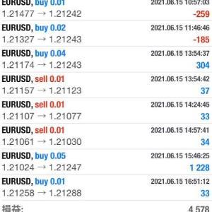 FX 無料自動売買、6/15の利益