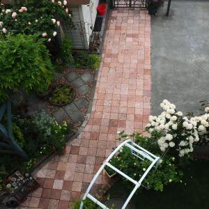 2階から見える 6月の庭
