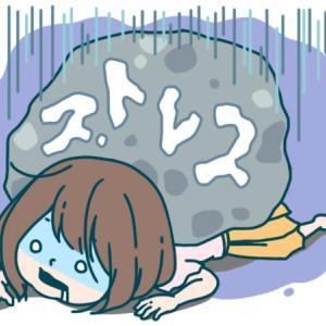 【pl⇒nt.】筋トレでストレス発散は本当か?ヾ(≧▽≦)ノ
