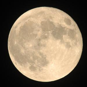 【pl⇒nt.】月で筋トレするより地球で筋トレしたほうが効率よしヾ(≧▽≦)ノ