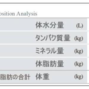 【pl⇒nt.】筋トレの効果を見える化する②ヾ(≧▽≦)ノ
