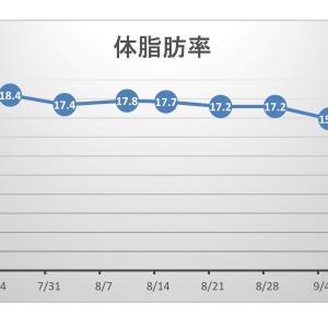 【pl⇒nt.】筋トレの効果をグラフ化する。体脂肪率はどう?(´▽`)