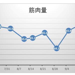 【pl⇒nt.】筋トレ効果をグラフ化する。体重は緩やかな減少。筋肉量は乱気流ヾ(≧▽≦)ノ