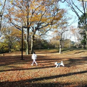 代々木公園であさんぽ★Part1
