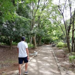 平日の深大寺散歩