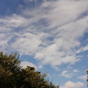 空と梅干し