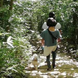 高尾山の下山は徒歩