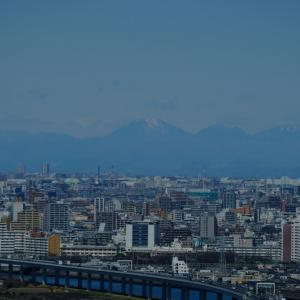 雪山を見る。