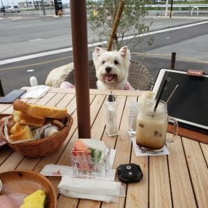 朝散歩でカフェだよ♪♪♪