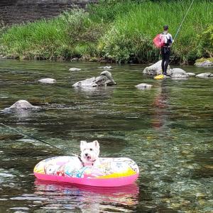 今年も天川で初泳ぎ♪♪-