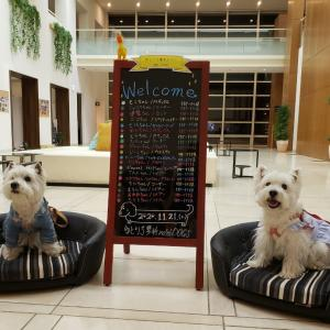 ゆとりろ蓼科ホテルwith DOGS①♪♪♪♪