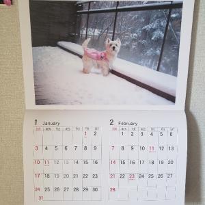 ジニィーカレンダー作りました♪♪♪