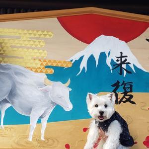 柳沢神社♪♪♪