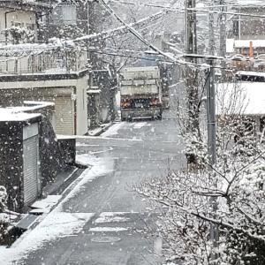 2021・初雪♪