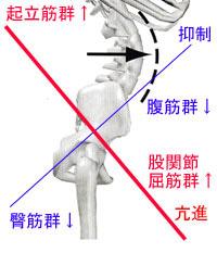 下半身の姿勢