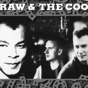 【リリース情報】 FINE YOUNG CANNIBALS: The Raw and The Cooked