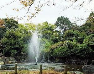 11/13☆柿田川公園