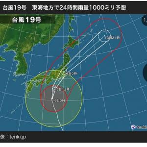 台風で、既に電気消えそう。