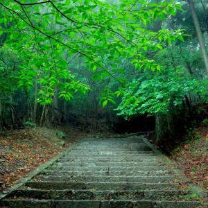九州の最重要霊場・英彦山で見た荒ぶる自然神の姿 2