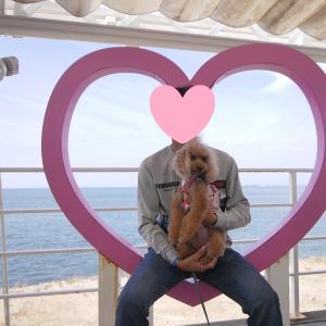 愛犬とのおでかけ2019年10月旅行10-クラフトサーカスにて♪-