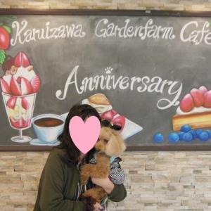 愛犬とのおでかけ2019年お誕生日旅行6-アットテラスカフェへ♪-