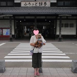 愛犬とのおでかけ-ふらっと訪夢さんへ♪-