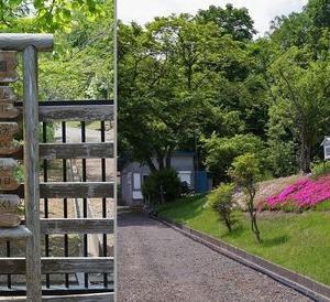 北海道薬科大学の薬草園