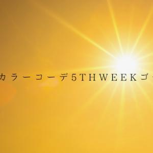 #装いカラーコーデ5thweekゴールド、開始!
