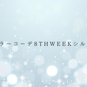 #装いカラーコーデ8thweekシルバー白、開始!