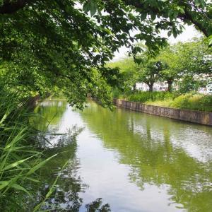 新川(土浦市)