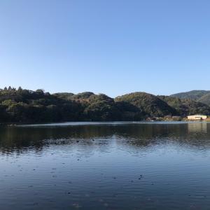 春散歩 大池に行こう! わぁーいヾ(´∇`。*)ノ