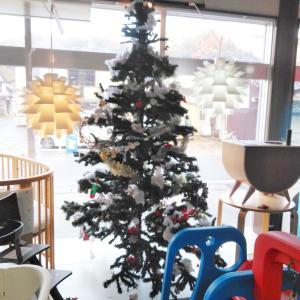 やっとクリスマスツリーを