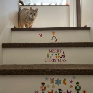 ニトリでクリスマス階段!可愛くて、お値段以上にゃ!