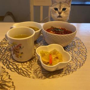 高校生男子の朝食⁈朝からドンブリ飯にゃ!