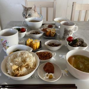 小松菜アンバサダー⁈今日の朝ごはんにゃ。