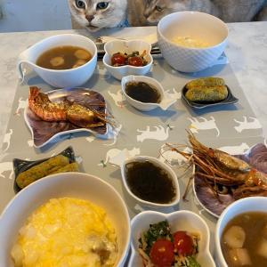 今日の朝ごはん!優しいお味にゃ。